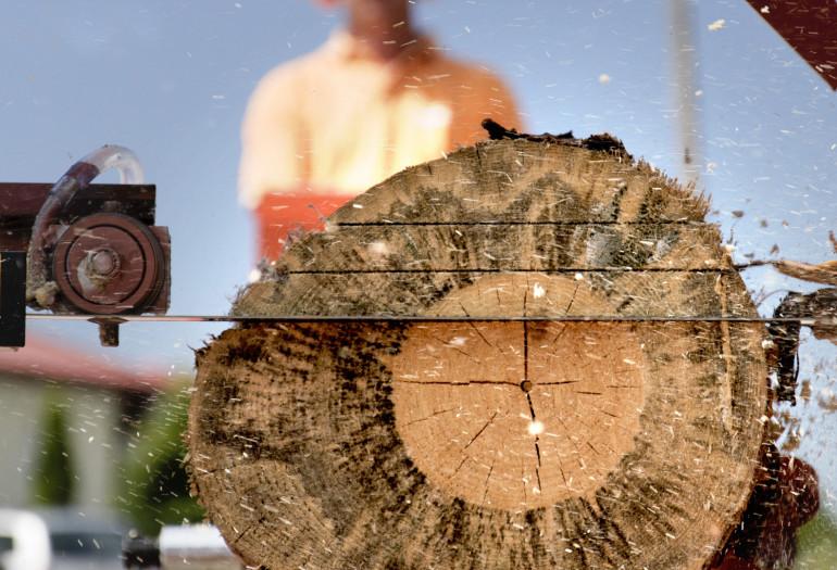 Sierra Wood-Mizer cortando