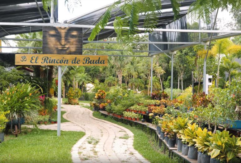 Espacios Verdes plant nursery