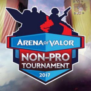 Arena of Valor Non-Pro Tournament, Laga Amatir Pemain Eropa