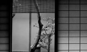 Kodaiji Wakuden