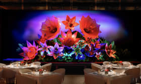 SW Steakhouse at Wynn Palace