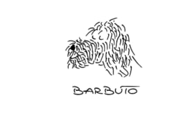 Barbuto