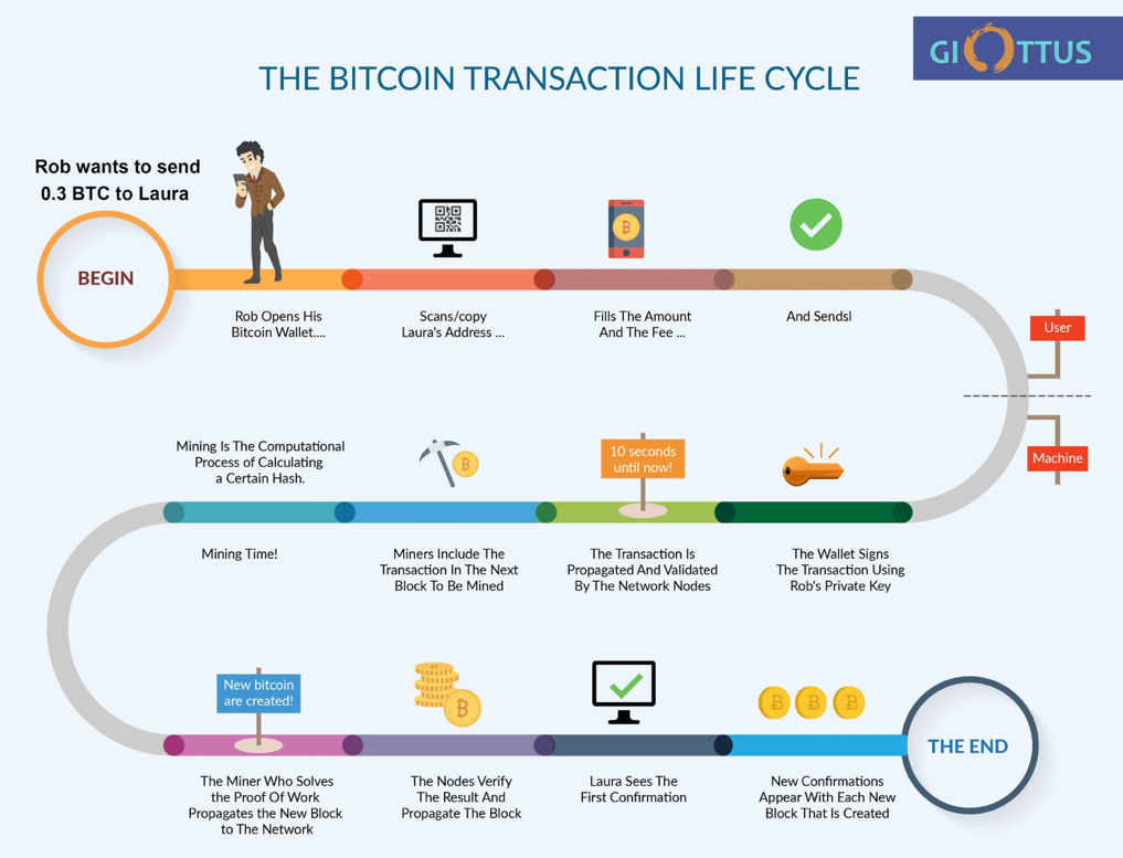 transaction cycle of blockchain