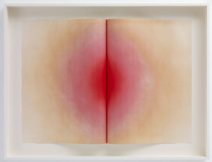 Fold, I by Anish Kapoor