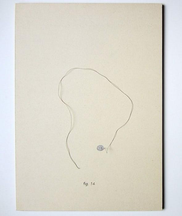 Fig. 14 (Botón e Hilo) by Mateo López