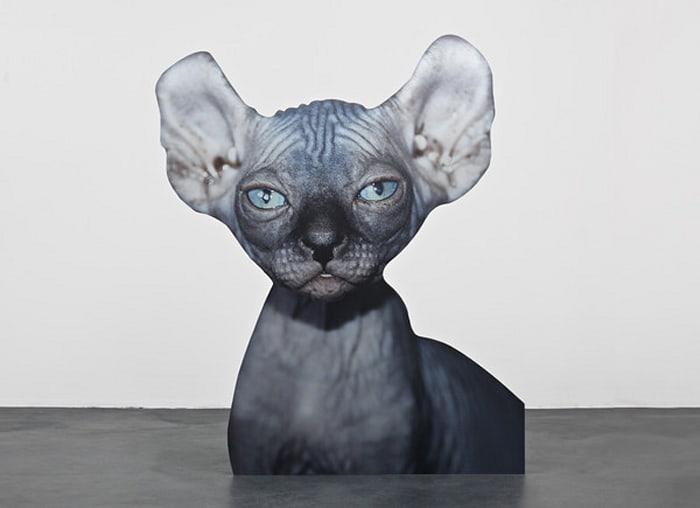 Approximation (sphynx cat) by Katja Novitskova