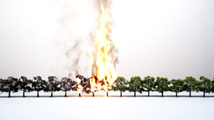 Tree line by John Wood Paul Harrison
