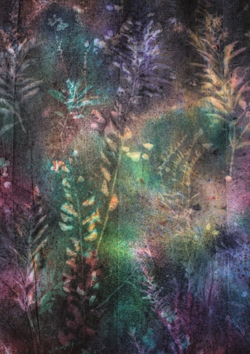 California Flora (National Forest Condensation Wall, North to South) by Sam Falls