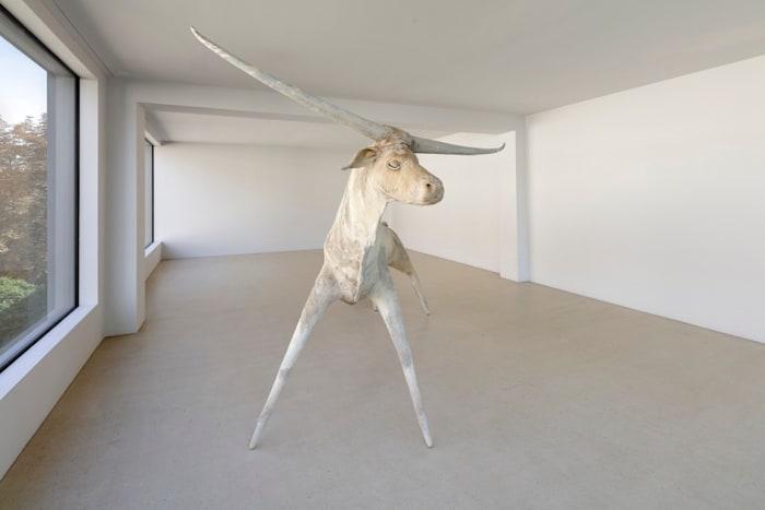 Ochse by Paweł Althamer