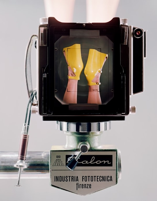 Linhof Technika V fabricated in Munich, Germany. Salon Studio Stand fabricated in Florence, Italy. Dual cable release. Prontor shutter. Symar-s lens 150mmm/f 5.6 Schneider kreuznach. Sinar fresnel lens placed with black tape on the ground glass. (Yellow) by Christopher Williams