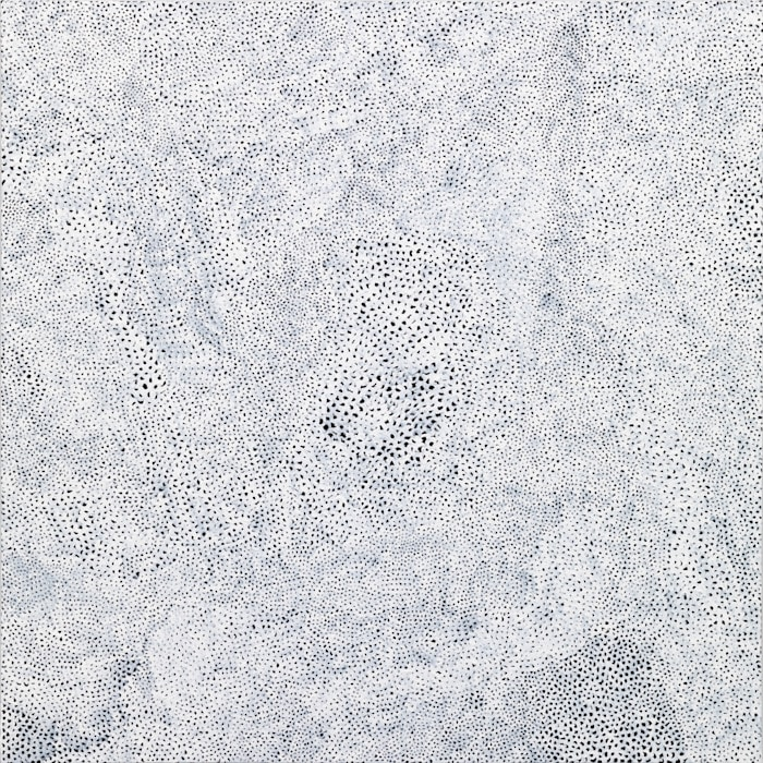 INFINITY-NETS [TSROI] by Yayoi Kusama