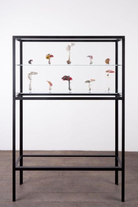 The Double Mushroom Vitrine (Tenfold) by Carsten Höller
