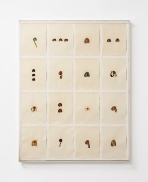 S.O.S. Starification Object Series #4 (Mastication Box) by Hannah Wilke