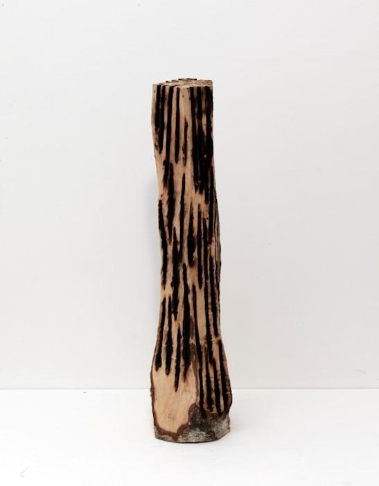 Branded Column by David Nash