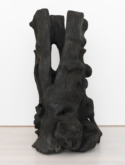 Fire Carved Holly by David Nash