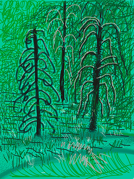 """Untitled No.16"" from ""The Yosemite Suite"" by David Hockney"