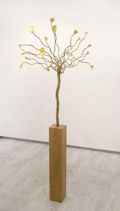 Instant Gratification (chips tree on wood) by François Morellet