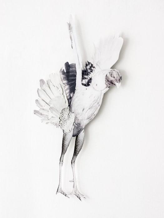 Untitled by Frida Orupabo
