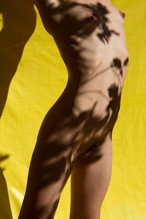 Untitled from Roxane II, 075 by Viviane Sassen