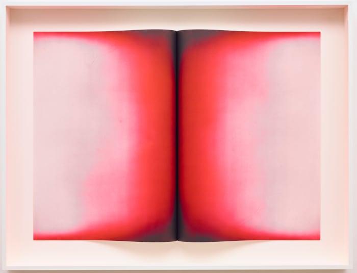 Fold V by Anish Kapoor