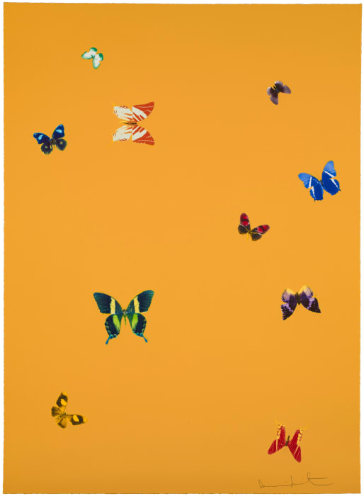 Your Beauty from The Wonder of You by Damien Hirst