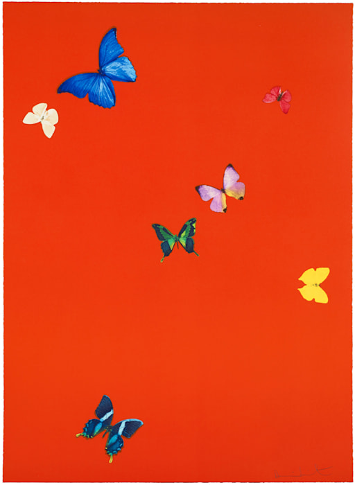 Your Feel from The Wonder of You by Damien Hirst