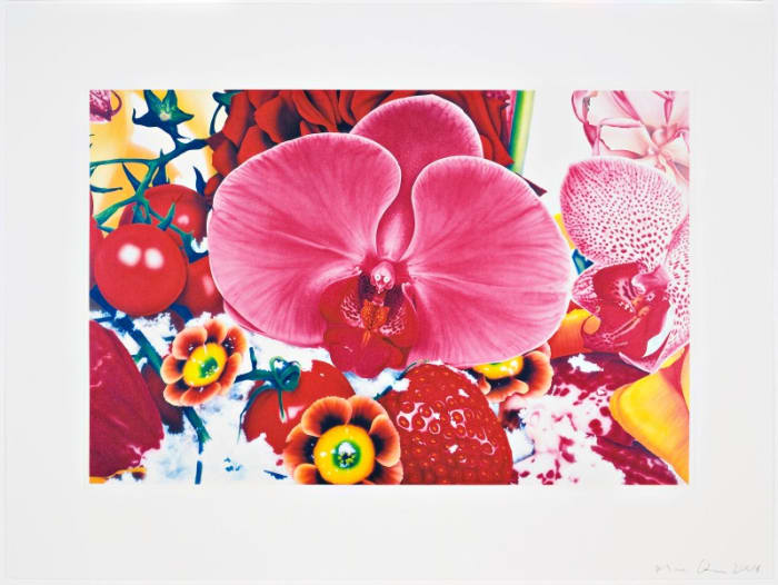 Six Moments of Sunrise by Marc Quinn
