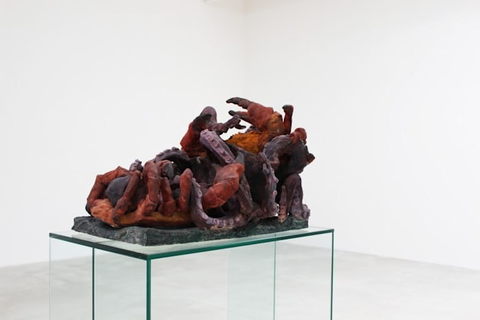 Untitled (Octopus) by Peter Wächtler
