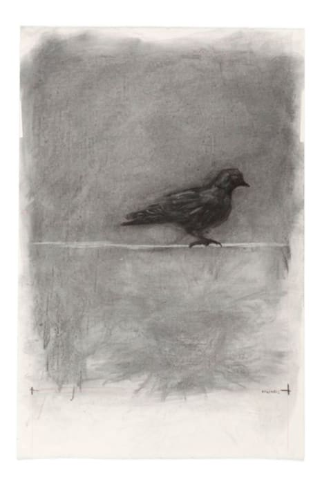 Drawing for Medicine Chest by William Kentridge