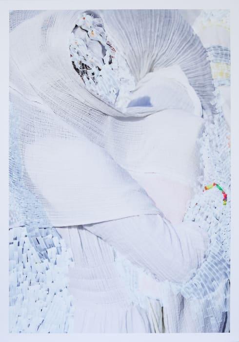 Shell by Viviane Sassen