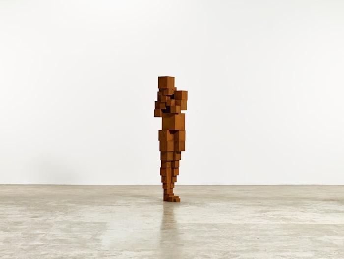 DAZE VI by Antony Gormley