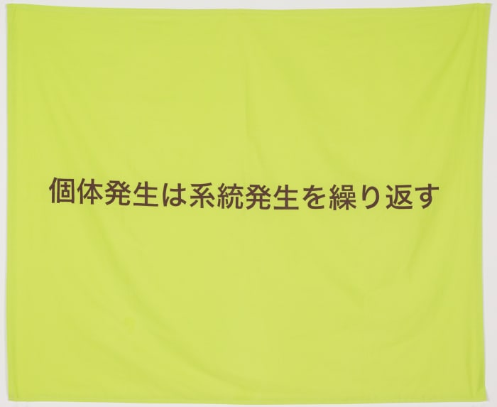 Flag (Ontogeny recapitulates phylogeny) by Yoichi Umetsu