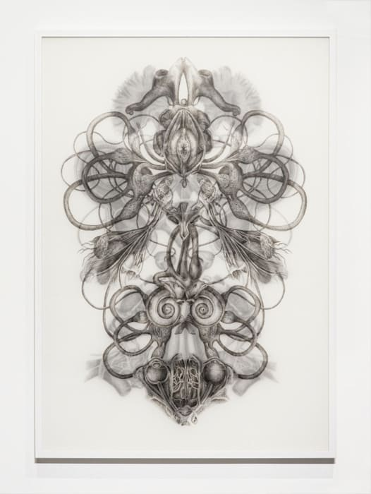 Rorschach Test No.1 by Angela Su