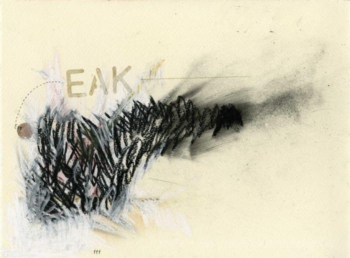 Catalogue d'Oiseaux (Common Grackle) by Samson Young