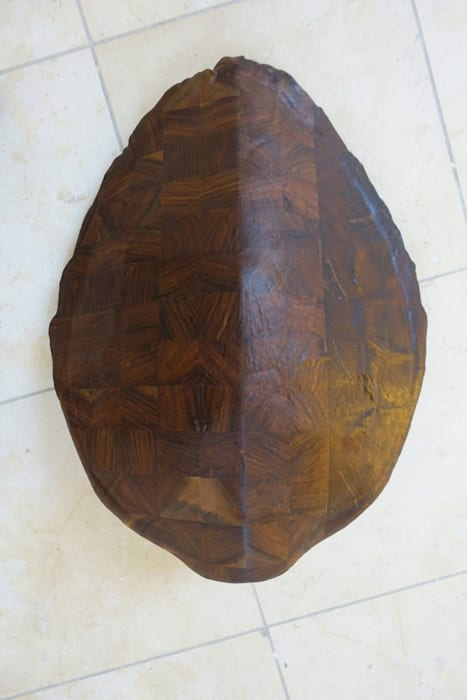 Tartaruga by Mirko Baselgia