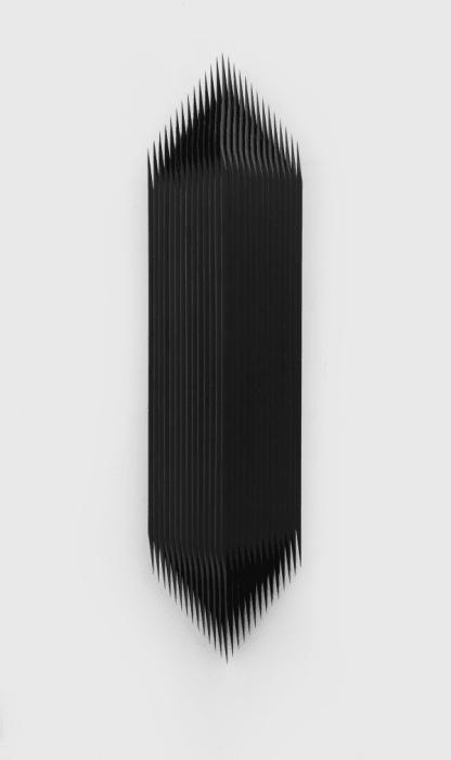 Overlaying - Branch by Yang Mushi