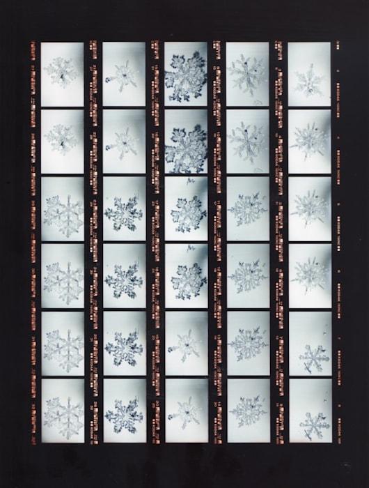 Contact / Snow Letter 1 by Risaku Suzuki