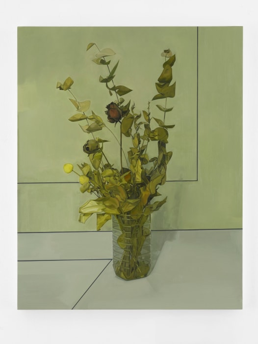 Aminadab by Gillian Carnegie