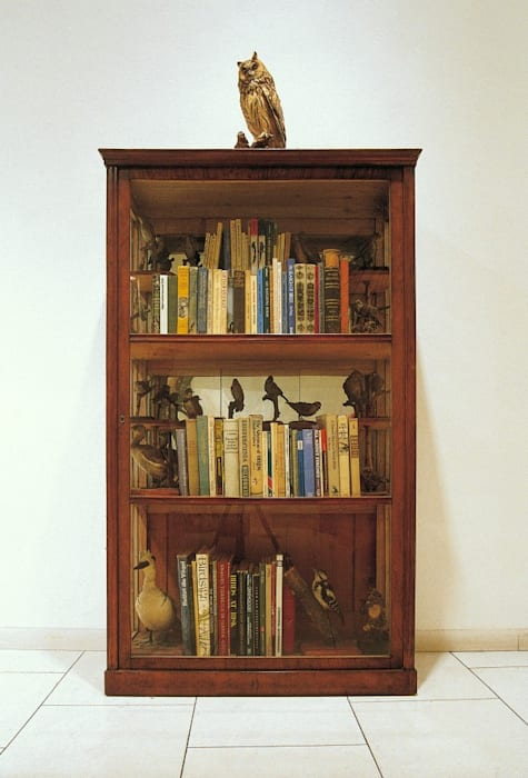 Bookcase for the Practical Ornithologist (for Rachel Carson) by Mark Dion
