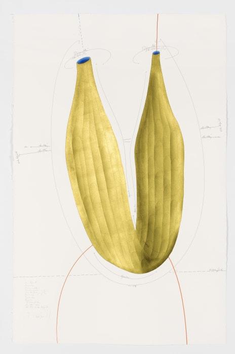 Hybrid (10) by Jorinde Voigt