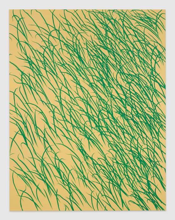 Grass by Calvin Marcus