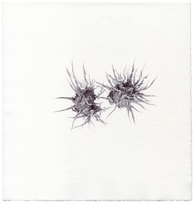Untitled, 02/2013 by Renato Orara