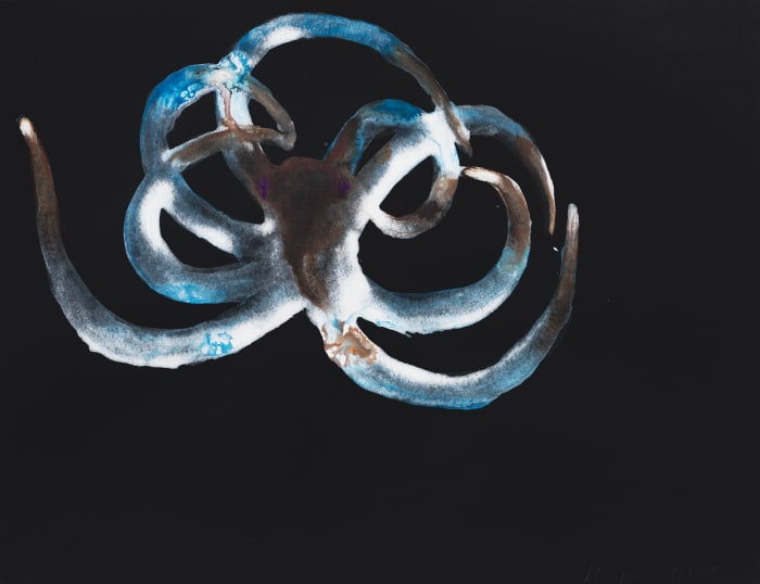 Untitled (Octopus) by Alexis Rockman