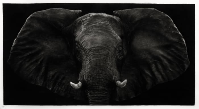 Study of Dark Bull Elephant by Robert Longo
