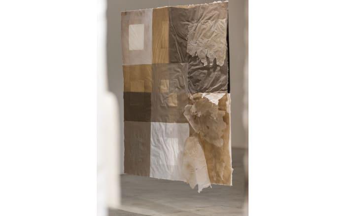 The Walls by Pinaree Sanpitak
