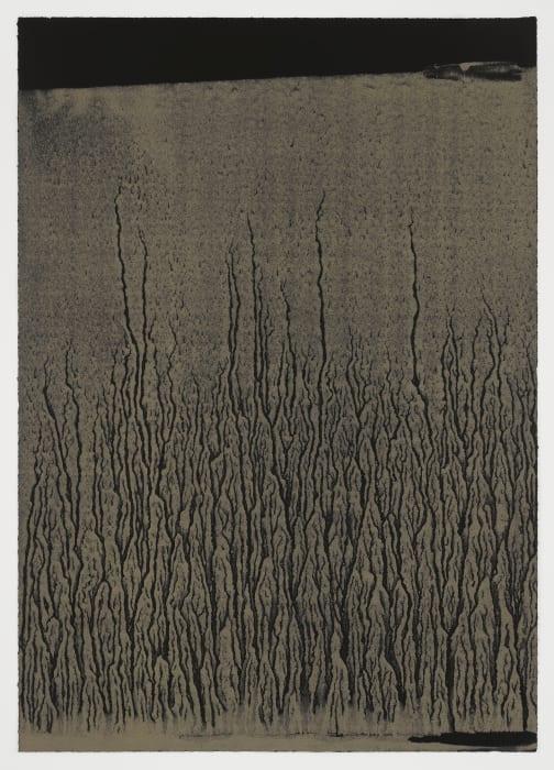 Low Tide by Richard Long