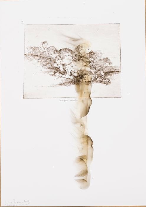 Siempre sucede!, Los desastres de la guerra series by Nuno Ramos