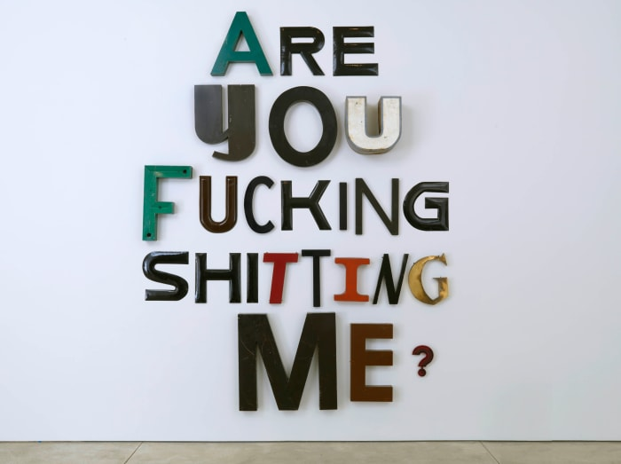 ARE YOU FUCKING SHITTING ME? by Jack Pierson