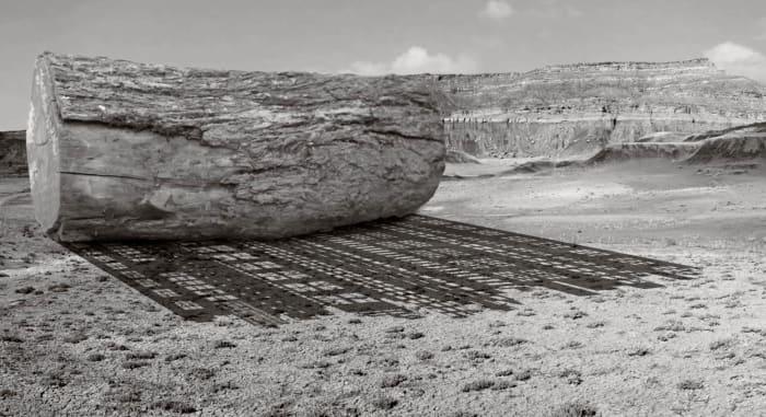 Shadow of the Ancestors by Gigi Scaria