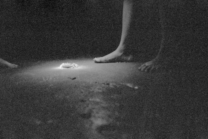 Light pushing #2 by Anri Sala